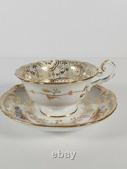 Coalport Hand Painted & Richly Gilded Tea Cup & Saucer