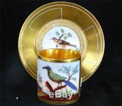 M017 Antique Old Paris Porcelain Ornithological Cup & Saucer Momot & Pingon