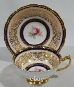 PARAGON PINK ROSE on COBALT BAND CUP & SAUCER Heavy Gold Gilding c1938-1952 MINT