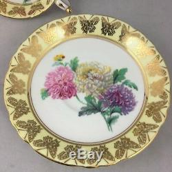 Paragon Cup & Saucer Chrysanthemum Gold Yellow Butterfly 3629 Purple Pink