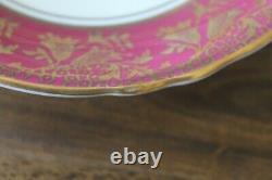 Paragon Large Cabbage Floating Rose Red Burgundy Gold Teacup Tea cup Saucer