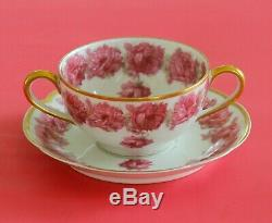 RARE Antique HAVILAND LIMOGES Cup & Saucer Pink Drop Rose Leaves GOLD