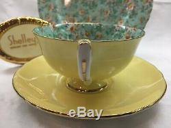 Shelley Marguerite Chintz Footed Lincoln Cup, Saucer & Plate #14217 Gold Trim