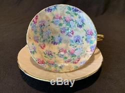 Shelley Summer Glory Oleander 13417/s15 Cup & Saucer Gold Rim Flowers Hydrangea