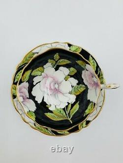 Vintage PARAGON Bone China White Cabbage Rose on Black Tea Cup & Saucer withGold